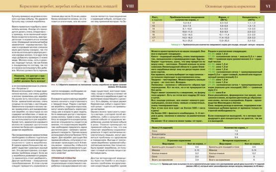 Трактат о кормлении лошадей