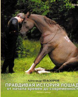 Правдивая история лошади от начала времен до современности