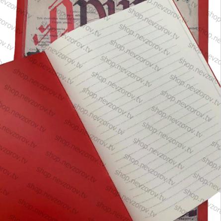 тетрадь Александра Невзорова ( точная копия)