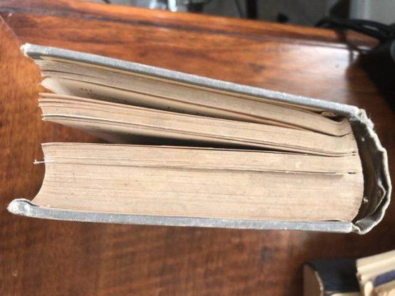 Иллюстрированный словарь общеполезных сведений. Под редакцией Эльпе. 1898