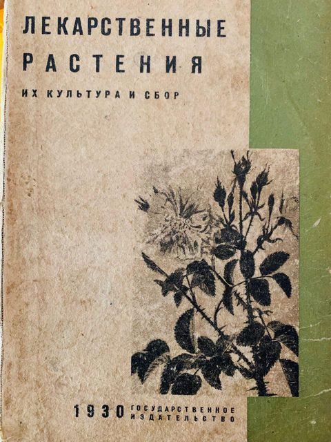 Лекарственные растения. Их культура и сбор. 1930