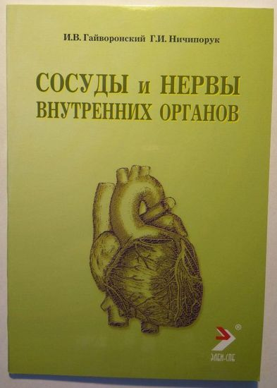 Сосуды и нервы внутренних органов