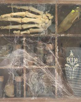 Реликварий с мощами св. Пигидия и пр. магическими редкостями